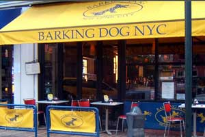 pet friendly restaurants in new york